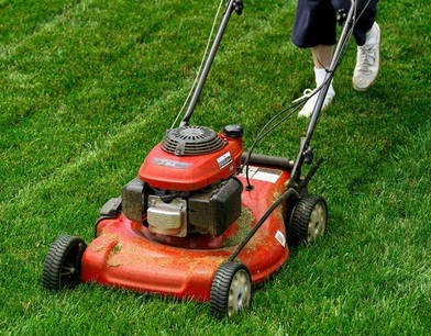 Press the primer button to install the lawnmower