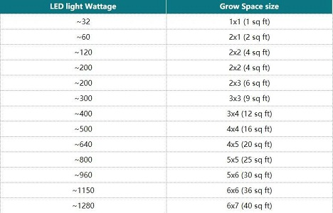 What Size Led Grow Light Do I Need?